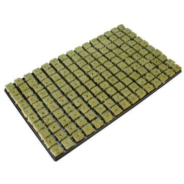 Grodan propagation plugs 25mm full tray of 150