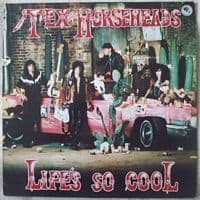 Tex and the Horseheads LIFE'S SO COOL Vinyl LP