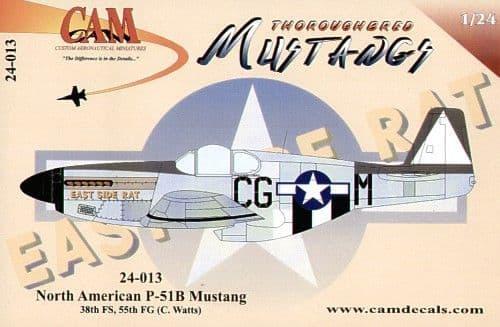 CAM 1/24 North-American P-51B Mustang # 24013