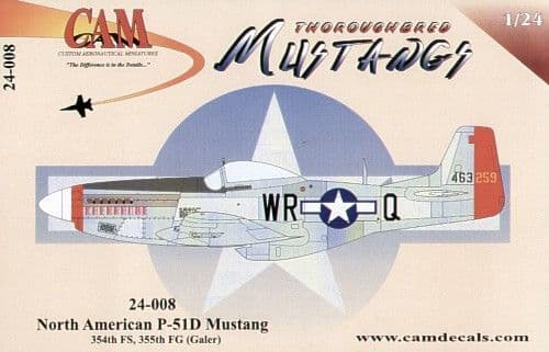 CAM 1/24 North-American P-51D Mustang # 24008