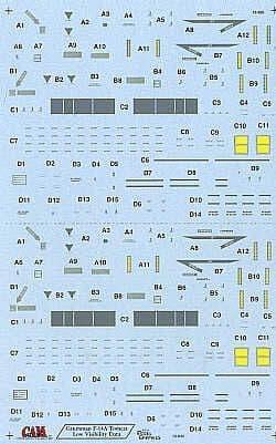 CAM 1/72 Grumman F-14A/B # 72035