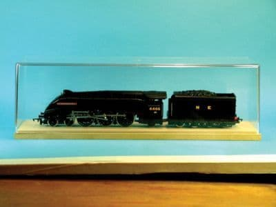 Expo Display Case for OO Gauge Model Locomotives # 50000