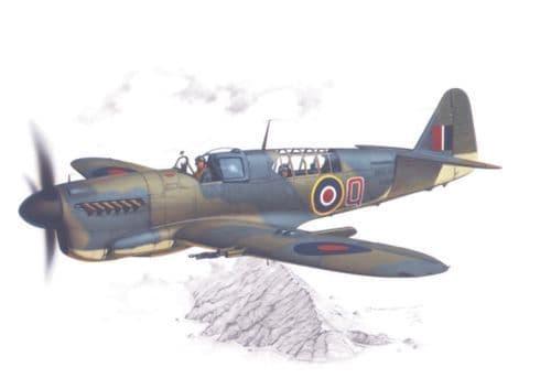 Special Hobby 1/48 Fairey Firefly Mk.I
