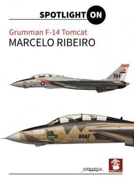 Spotlight on Grumman F-14 Tomcat