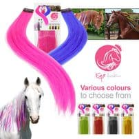 Mane & Tail Extensions