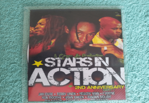STAR IN ACTION 22ND ANNIVERSARY DVD)
