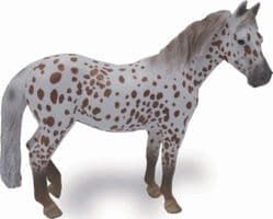 British Spotted Pony Mare