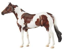 Ideal Series - American Paint Horse