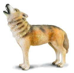 Timber Wolf Howling
