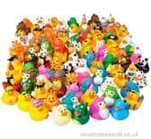 144 Piece Rubber Duck Assortment (5cm)