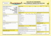 Non-Domestic Inspection Record (Personalised) Pad 6