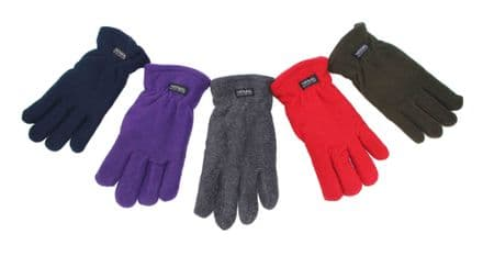 Flecce gloves assorted colours GL245759