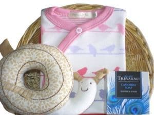 Butterfly Girl Baby Gift Basket by Mulberry Organics